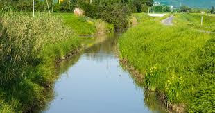 Plaquette sur l'entretien des cours d'eau